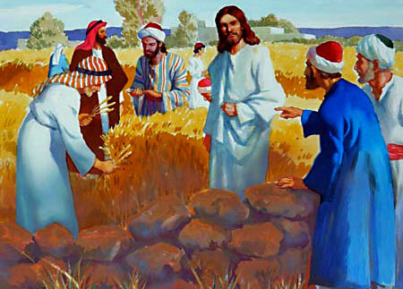 "The spies complained to Jesus, saying, ""Behold, Thy disciples do that which is not lawful to do upon the Sabbath day."""